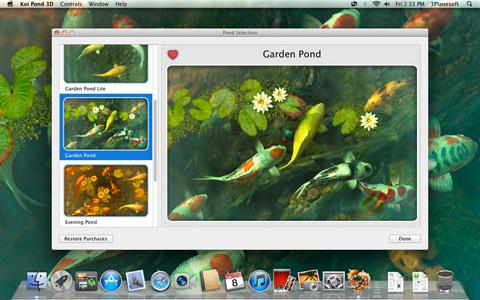 Koi Pond 3D