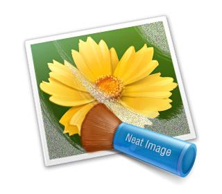 Neat Image v7 Pro