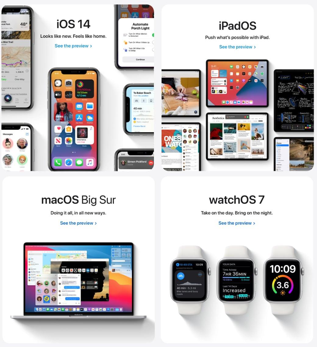 OSのプレビューページ